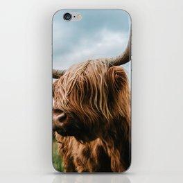 Scottish Highland Cattle - Animal Photography iPhone Skin