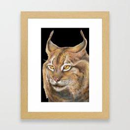 Lynx Framed Art Print