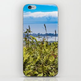 Looking Through Tall Grass and Wildflowers at the Lake on top of Mombacho Volcano, Nicaragua iPhone Skin