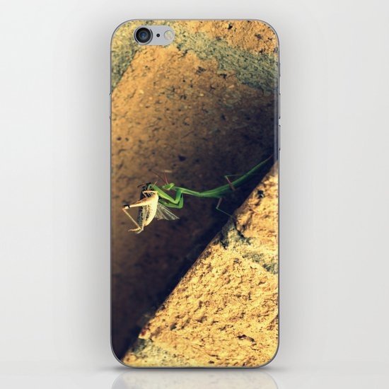 Sacrificial Grasshopper iPhone & iPod Skin