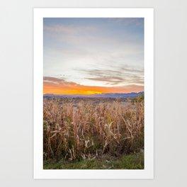 70 Days of Sunrises Art Print