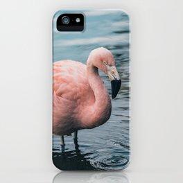 Lone Flamingo iPhone Case