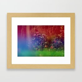 Flowers in Film, II Framed Art Print