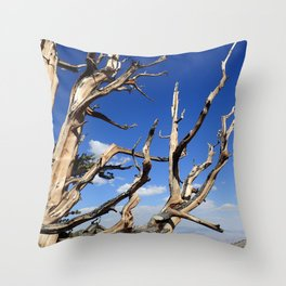Trees of ancient times Throw Pillow