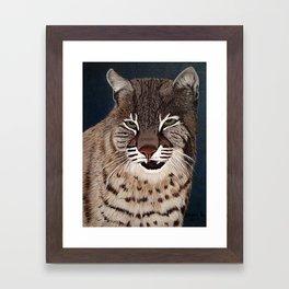 Bocat Framed Art Print