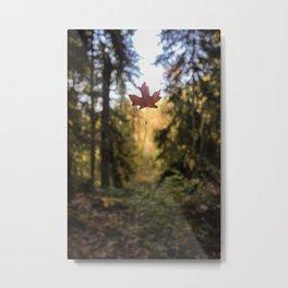 A Glimpse into Autumn Metal Print