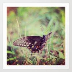 nature capture Art Print