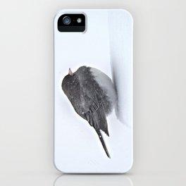 Brave Bird in a Blizzard iPhone Case