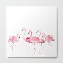Flamingo Farm- Tropical Animal Bird World Metal Print