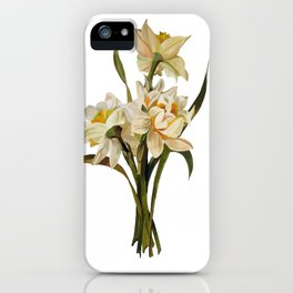 Double Narcissi In A Bouquet Isolated iPhone Case