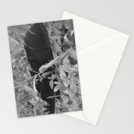 Black plume Stationery Cards