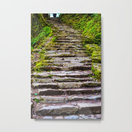 Stone Stairway in the Forest Metal Print