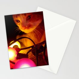 Jaspar and His Christmas Lights Stationery Cards