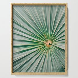 Palm up close | Botanical finea art photography print | Shades of green Serving Tray
