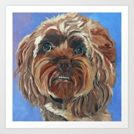 Shih Tzu Dog Portrait Art Print