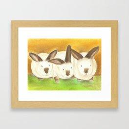 The Radical Rabbit Sisters Framed Art Print