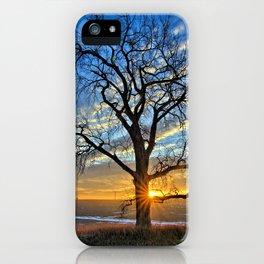 Sunburst Cottonwood iPhone Case