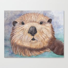 Surprised Otter Canvas Print