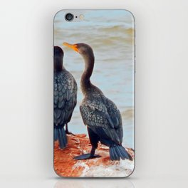 Double-Breasted Cormorants iPhone Skin