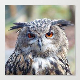 Eurasian Eagle-Owl, Uhu Canvas Print