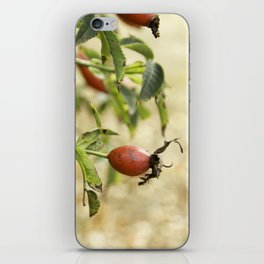 rot1 iPhone Skin
