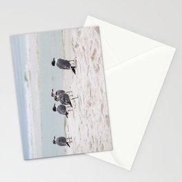 Destin Emerald Coast Shorebirds Stationery Cards