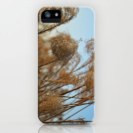 Curling Miscanthus iPhone Case