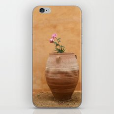 Mediterranean Urn iPhone & iPod Skin
