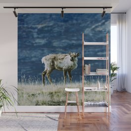 The North | Reindeer Wall Mural