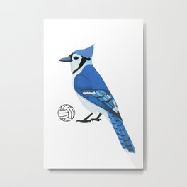 Volleyball Blue Jay Metal Print