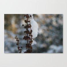 Snow attack Canvas Print