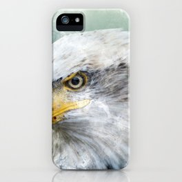 Bald Eagle Haliaeetus iPhone Case