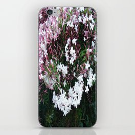 Beautiful Jasmine Flowers In Full Bloom  iPhone Skin