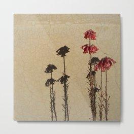 Shadows and flowers Metal Print