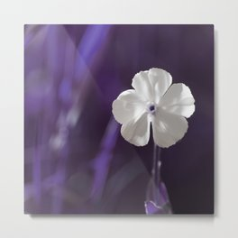 White Flower Art Metal Print