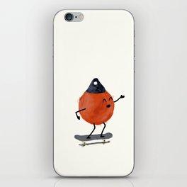 Skater Buoy iPhone Skin