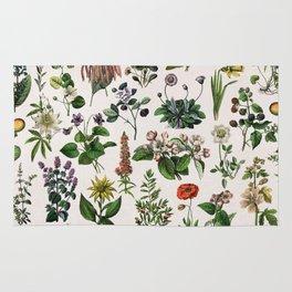 vintage botanical print Rug