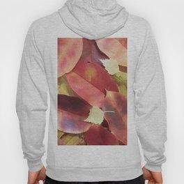Autumn Leaves - Seasonal Photography by Fluid Nature Hoody