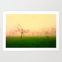 Morning Fog  - JUSTART © Art Print