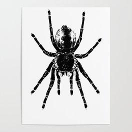Scary Tarantula Spider Halloween Black Arachnid Poster