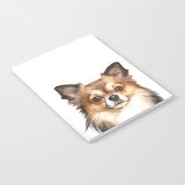 Chihuahua Portrait Notebook