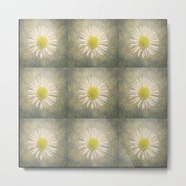 Daisy squares Metal Print