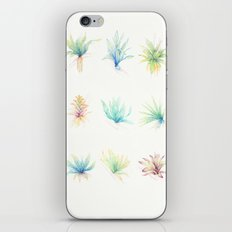 Epiphytes. iPhone Skin