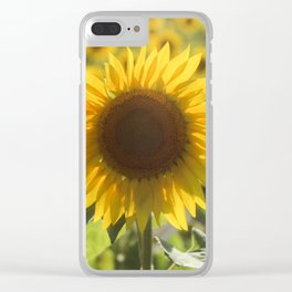 Sunflower Field Clear iPhone Case