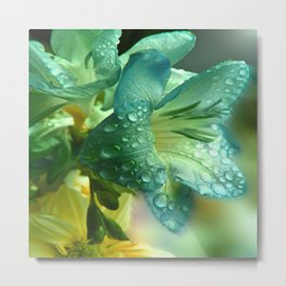 LILIES AND WATER DROPS Metal Print