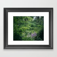 Purple Flowers Growing in the Forest Framed Art Print