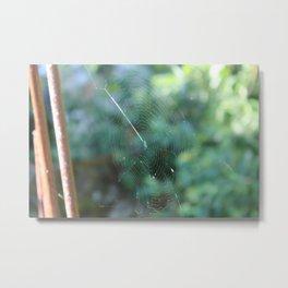 spidernet Metal Print