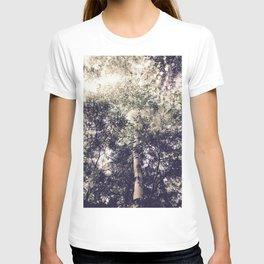Dappled Light Filtered Through Trees T-shirt