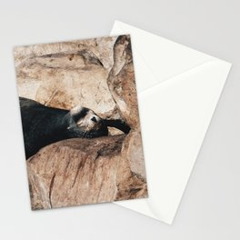 Sleepy Sea Lion Stationery Cards