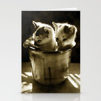 kittens Stationery Cards featuring Kittens by Northern Light Images